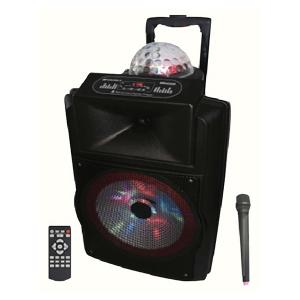 Olsenmark OMMS1166 12-inch Rechargeable Speaker with Remote Control & Mic-HV