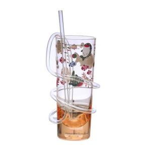 Royalford RF6167 Transparent Acrylic Glass with Straw-HV