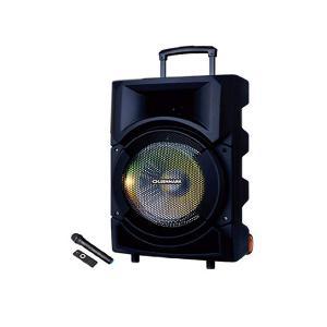 Olsenmark OMMS1179 Rechargeable Trolley Speaker-HV