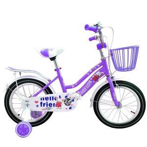 16 Inch Girls Cycle Purple GM4-pur-HV