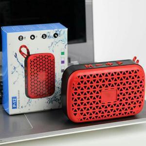 P-12 Portable Speaker-HV