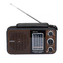 Olsenmark OMR1239 Rechargeable Radio with USB-LSP